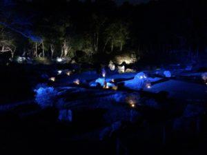 雪舟庭ライトアップ青色